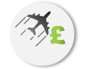 Flight Price Icon