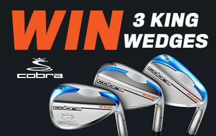 Cobra Wedge Competition
